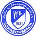 Vereinslogo VfB Schrecksbach