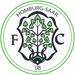 Vereinslogo FC 08 Homburg
