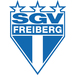 Vereinslogo SGV Freiberg U 19