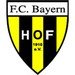 Vereinslogo FC Bayern Hof
