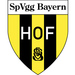Vereinslogo SpVgg Bayern Hof