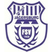 Vereinslogo FSV Jägersburg U 17