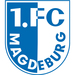 Vereinslogo 1. FC Magdeburg U 19