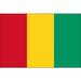 Vereinslogo Guinea U 17