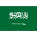 Club logo Saudi Arabia