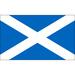 Vereinslogo Schottland U 21