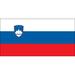 Vereinslogo Slowenien