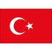 Vereinslogo Türkei
