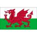 Club logo Wales