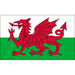 Vereinslogo Wales U 17