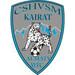 Vereinslogo WFC Kairat