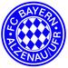 Club logo Bayern Alzenau