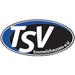Vereinslogo TSV Emmelshausen