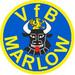 Vereinslogo VfB Marlow Ü 50