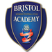 Club logo Bristol City WFC