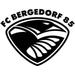 Vereinslogo FC Bergedorf 85