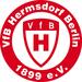 Vereinslogo VfB Hermsdorf