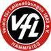 Vereinslogo VfL Hamm/Sieg