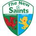 Vereinslogo The New Saints FC