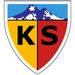 Vereinslogo Kayserispor