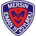 Vereinslogo Mersin Idmanyurdu
