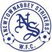 Vereinslogo Crusaders Newtownabbey Strikers