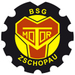 Vereinslogo Motor Zschopau