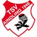 Vereinslogo TSV Aindling