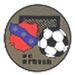 Club logo FC Erbach
