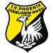 Vereinslogo Phoenix Düdelsheim