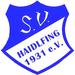 Vereinslogo SV Haidlfing