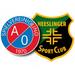 Vereinslogo JFV A/O/Heeslingen U 15