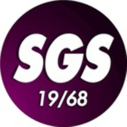 Club logo SG Essen-Schönebeck