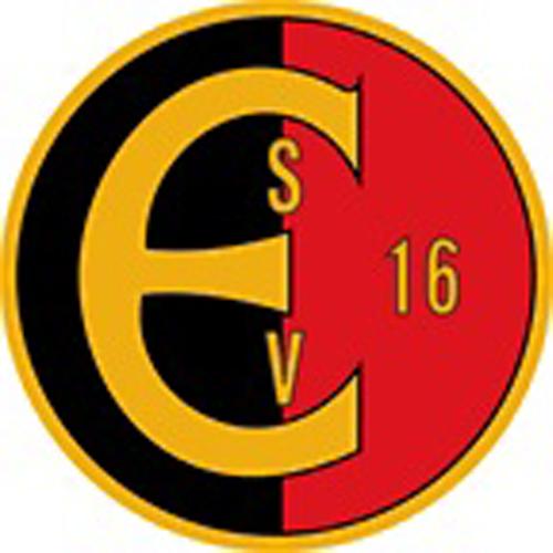 Vereinslogo SpVgg Erkenschwick