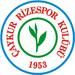 Vereinslogo Caykur Rizespor