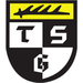 Club logo TSG Balingen