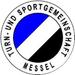 Vereinslogo TSG Messel