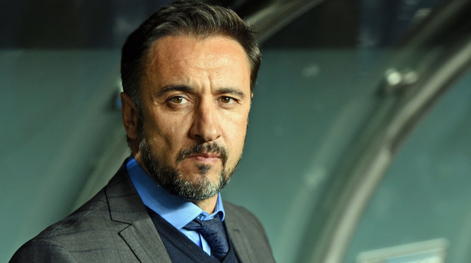 Profile picture of Vitor Pereira