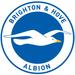 Club logo Brighton & Hove Albion