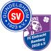Vereinslogo SG SV Gundelsheim/FC Eintracht Bamberg U 15 (Futsal)