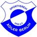 Vereinslogo SV Adler Berlin U 17 (Futsal)