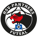 Vereinslogo HSV Panthers