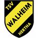 Vereinslogo TSV Hertha Walheim U 19 (Futsal)