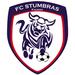 Vereinslogo FC Stumbras