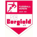 SC Borgfeld U 17