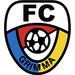 Vereinslogo FC Grimma