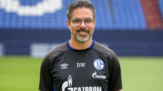 Profile picture of David Wagner