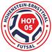 Vereinslogo VFL 05 Hohenstein-Ernstthal