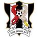 Vereinslogo Cefn Druids AFC